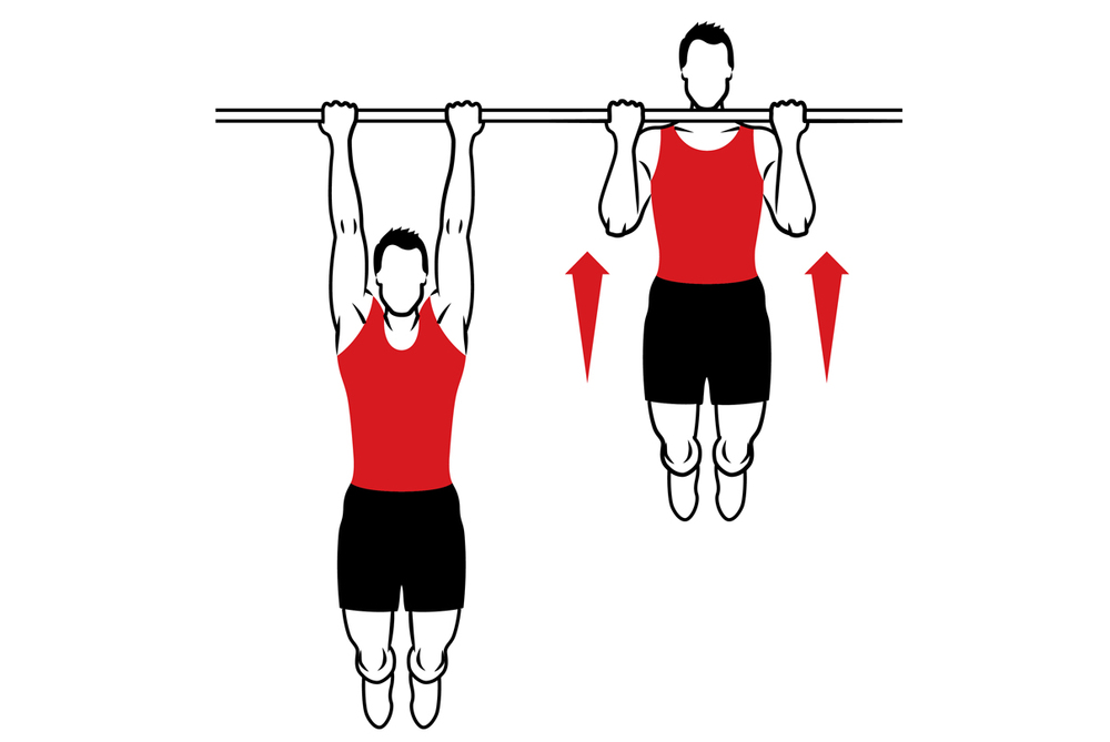 best bodyweight exercises for biceps